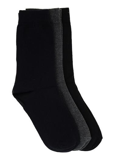Divarese Çorap Lacivert
